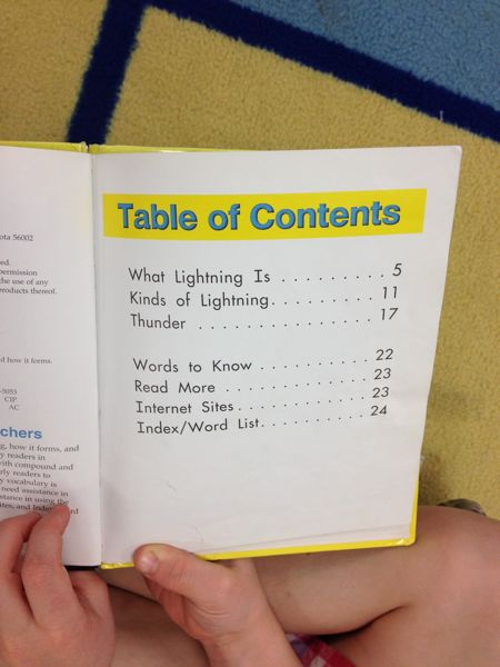 Book Table Of Contents Example